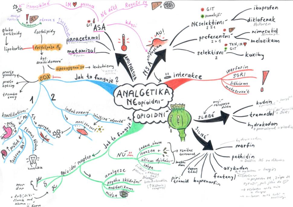 myšlenková mapa pro mediky analgetika