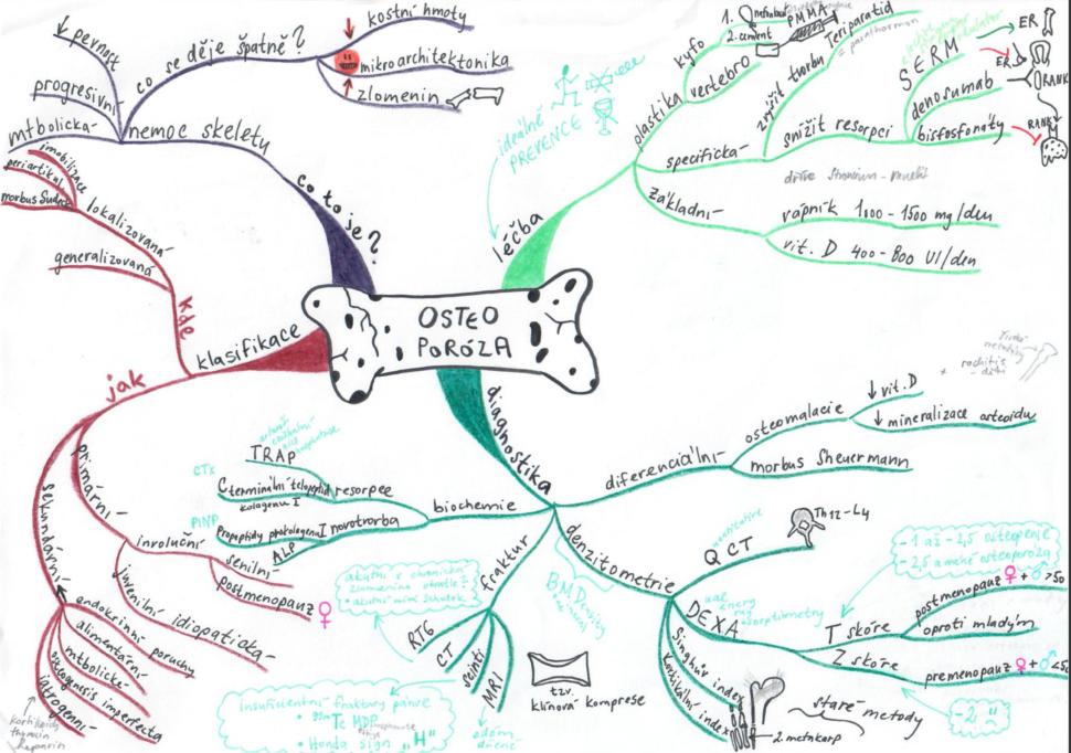 myšlenková mapa studium medicíny